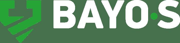 BAYO•S ground screws