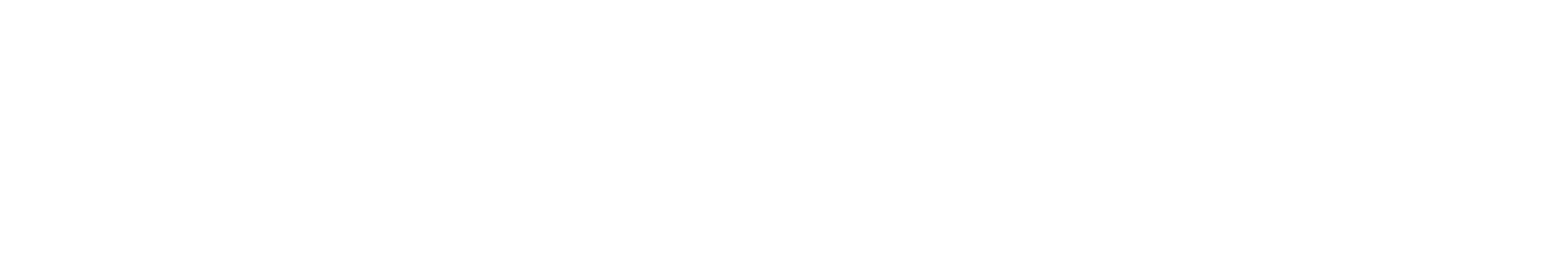 RDX Extendable Ground Screws
