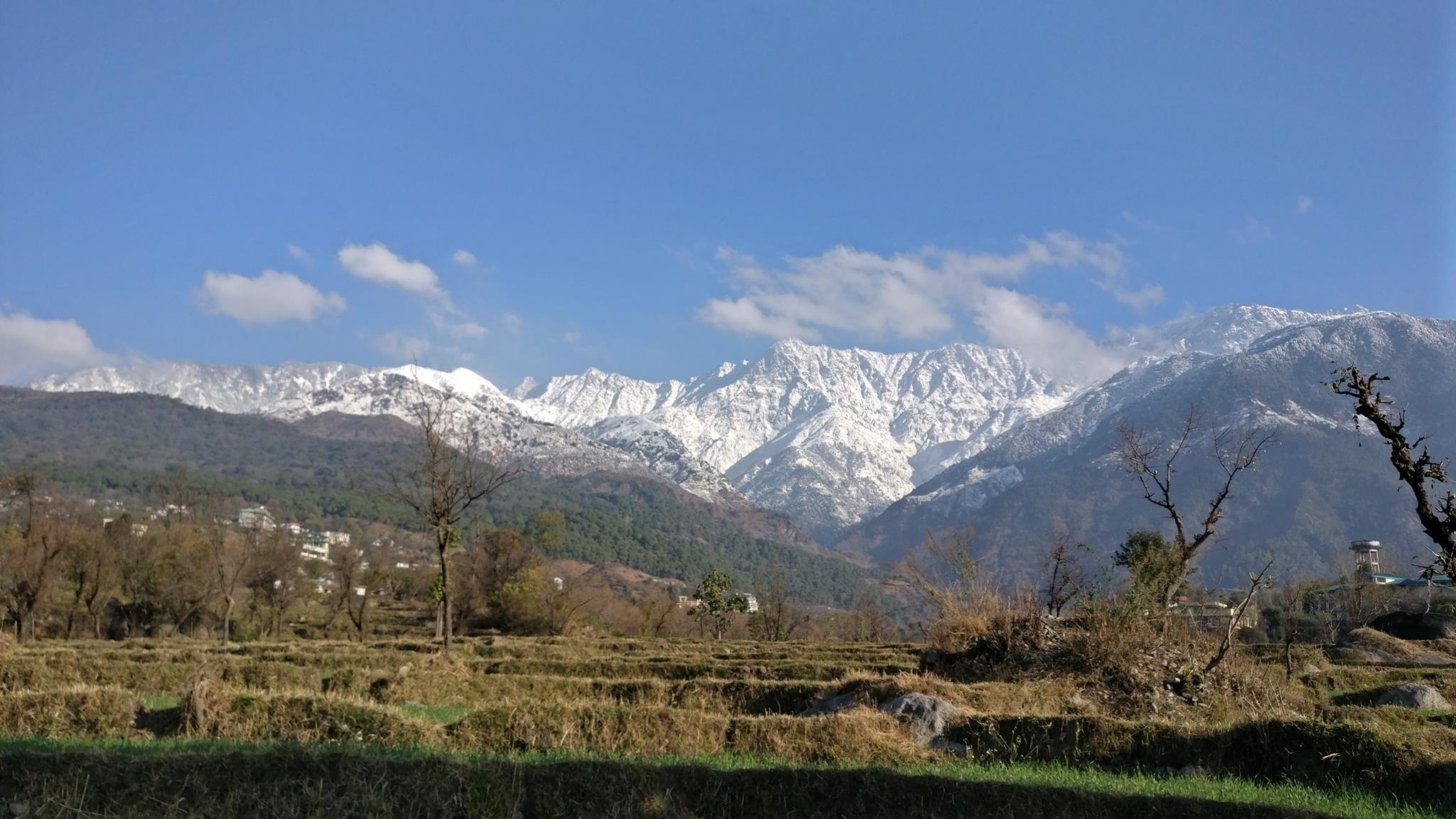 <h2>The Ballu </h2><p>View Of The Dhauladhars From The Back Yard</p><a title='Read more' href='#'></a>