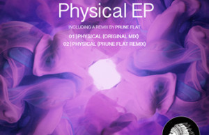 Murat Meijer, Physical, Prune Flat, Remix, Free, Download, Mp3, Zippy, Zippyshare, Soundspace, Chief Recordings, Soundspace
