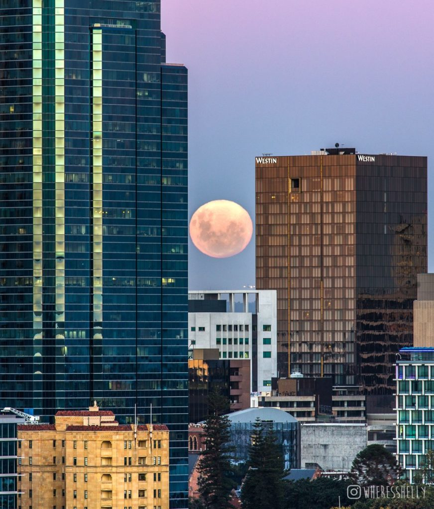 In Kings Park, Perth, the striking photo shows the Supermoon aligning perfectly between two buildings