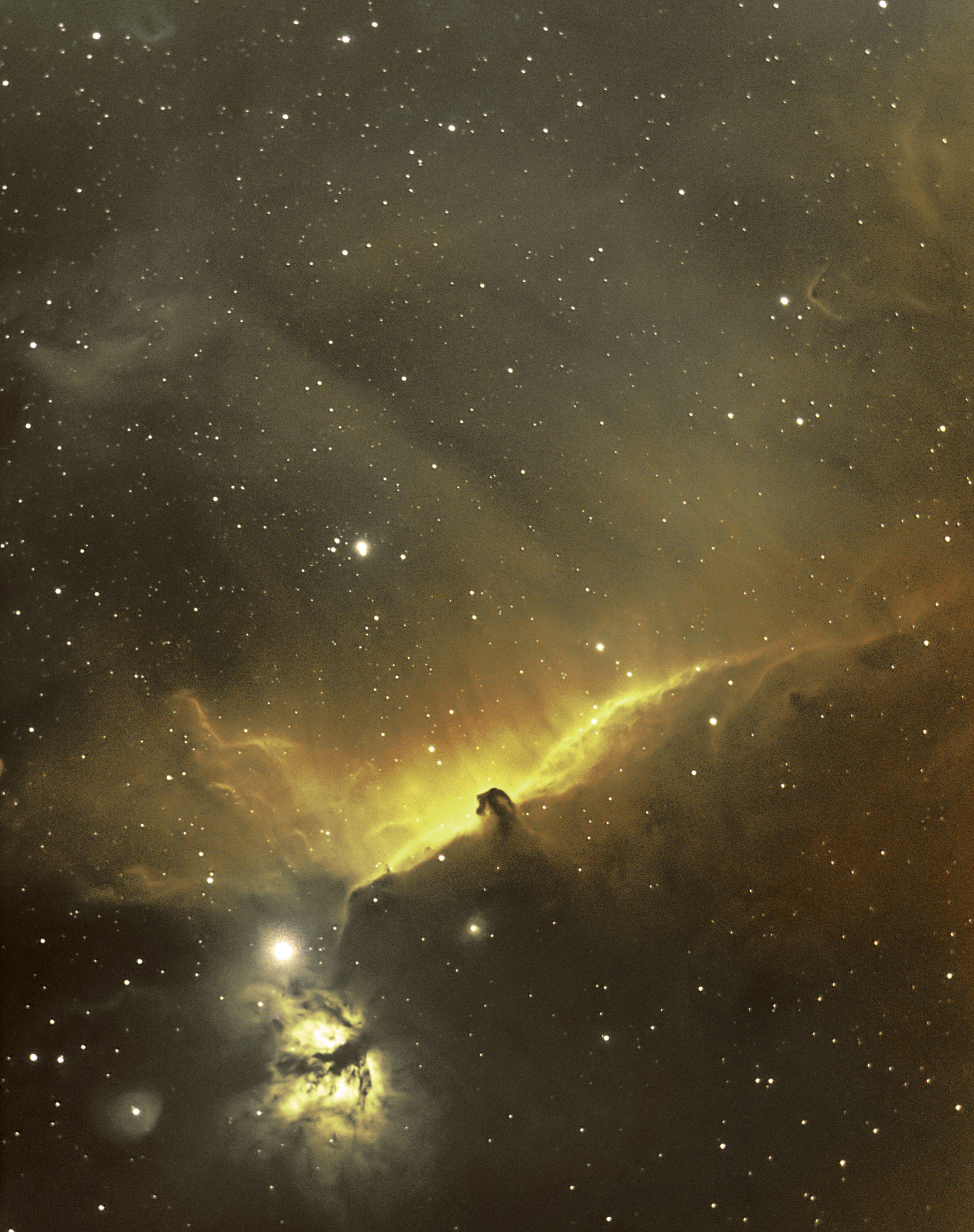 A horse head and flame nebulae