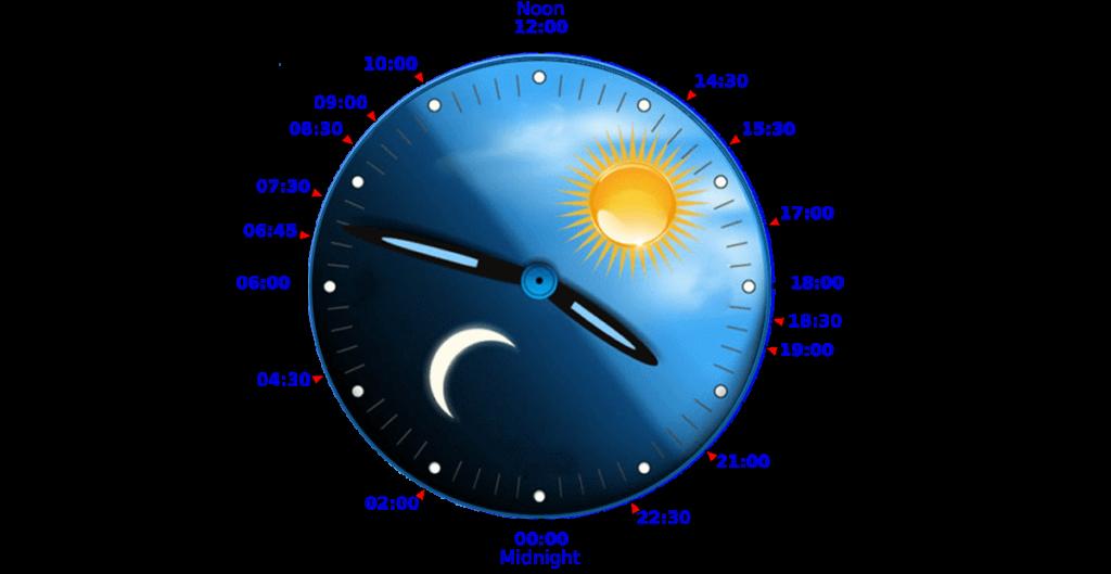 daily-circadian-rhythm.png