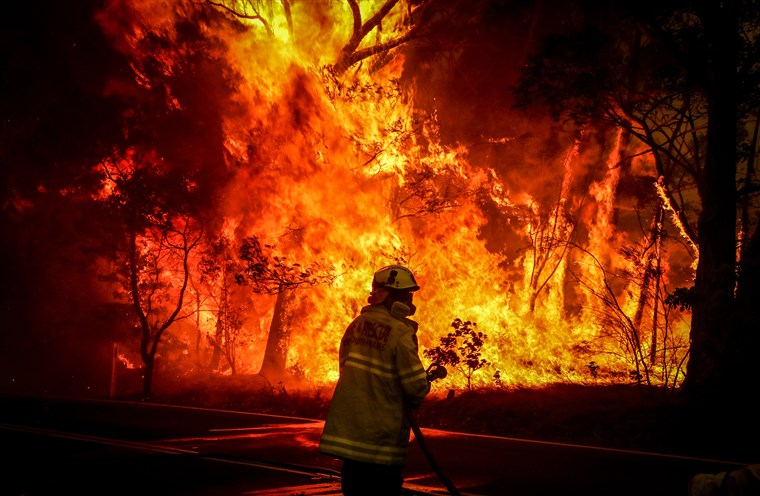 Fires have ravaged millions of acres in Australia
