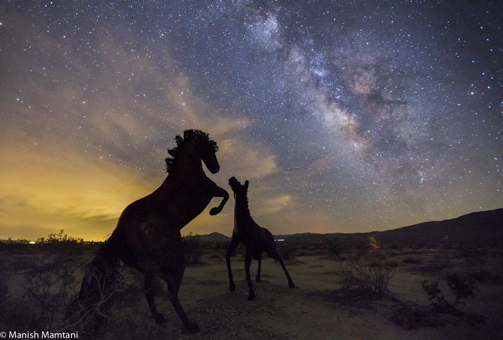 These horse statues look almost real in this stunning shot from astrophotographer Manish Mamtani. These sculptures captured under the Milky Way are created by artist Ricardo Breceda.