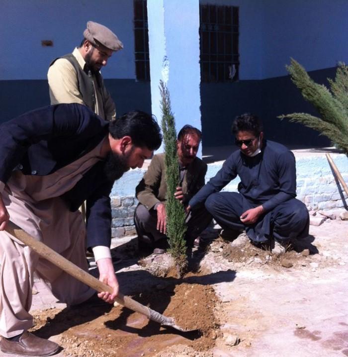 Balochistan tree campaign