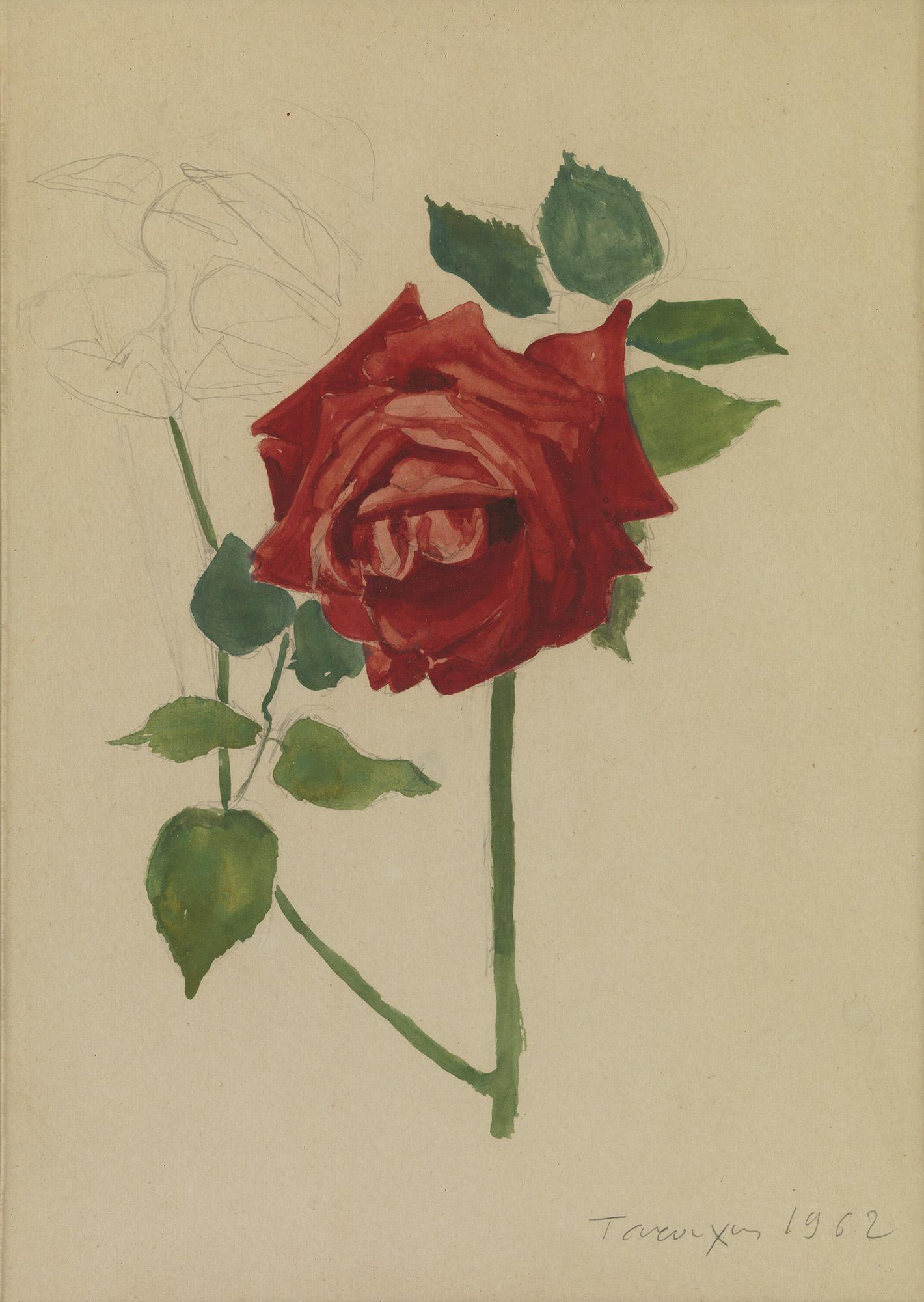 Yiannis Tsarouchis - Roses