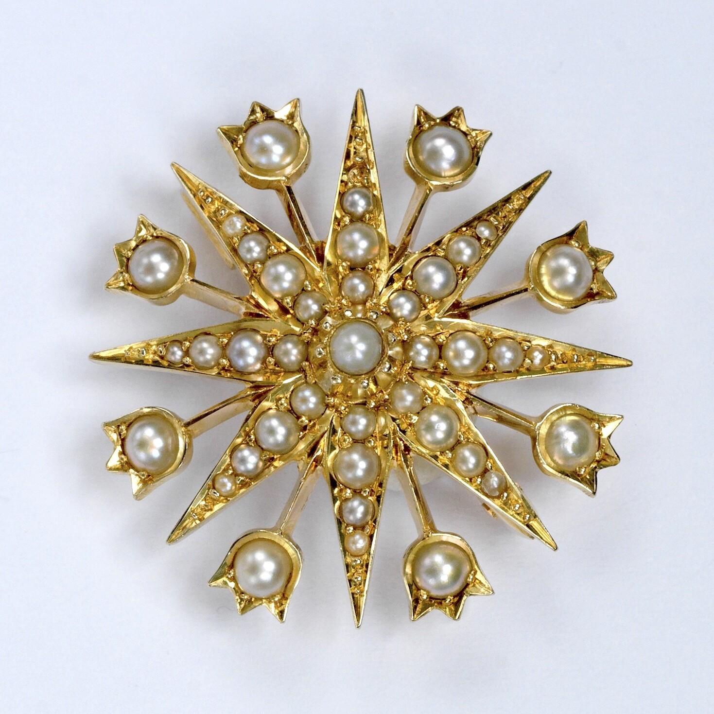 Victorian Starburst pendant:brooch