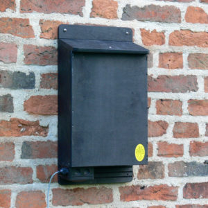 Heated_Bat_Box_on_wall