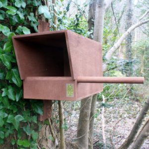 Kestrel_Nest_Box