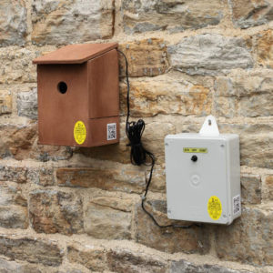 advanced_wireless_bird_box_camera