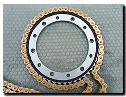 Aprilia Caponord ETV1000 Rally-Raid Ognibene 8098-45 rear sprocket and DID ZVM-X chain