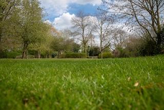 HPS Lawns