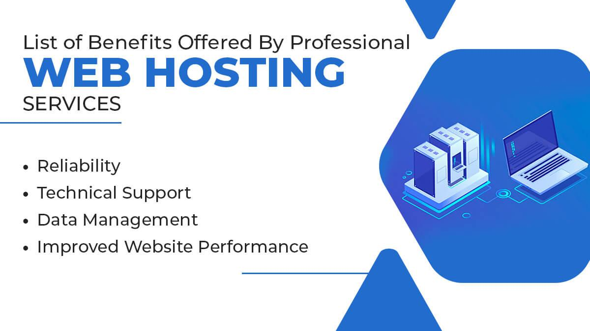 Benefits Offered By Professional Web Hosting Services