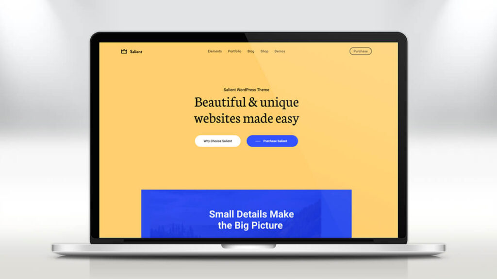 Salient- Best WordPress Themes for Small Business