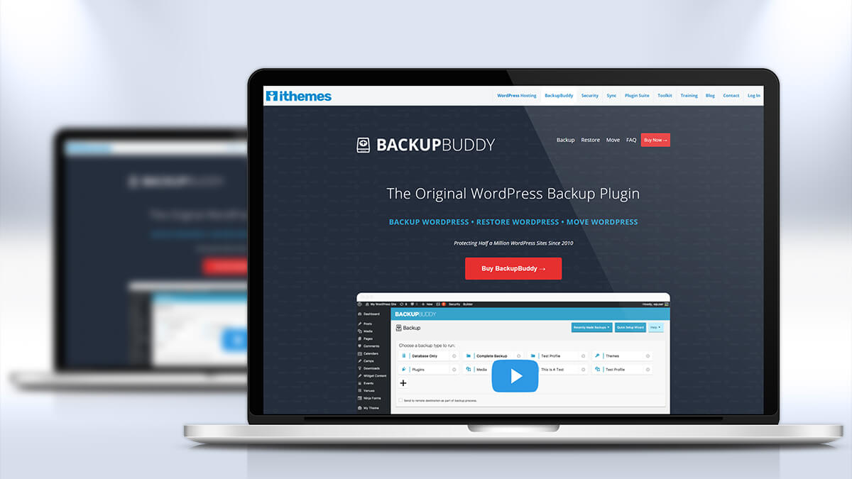 Backup Buddy- Free And Essential Plugins For WordPress