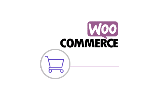 Why Should You Prefer Woocommerce?