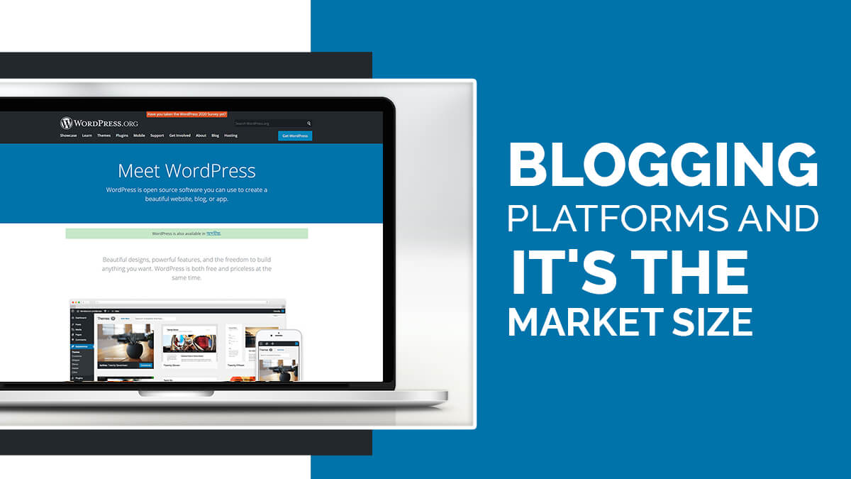 Blogging Platforms And It's The Market Size