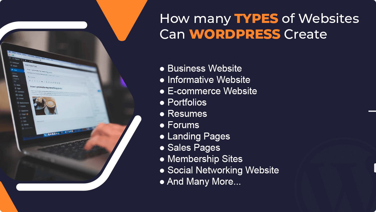 How Many Types of Websites Can WordPress Create?