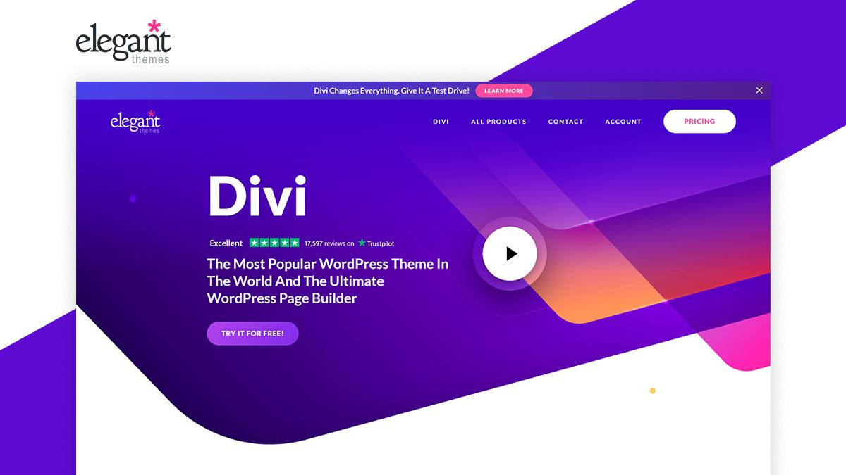 Divi- 8 WordPress Page Builder That Can Help You Build Amazing Websites