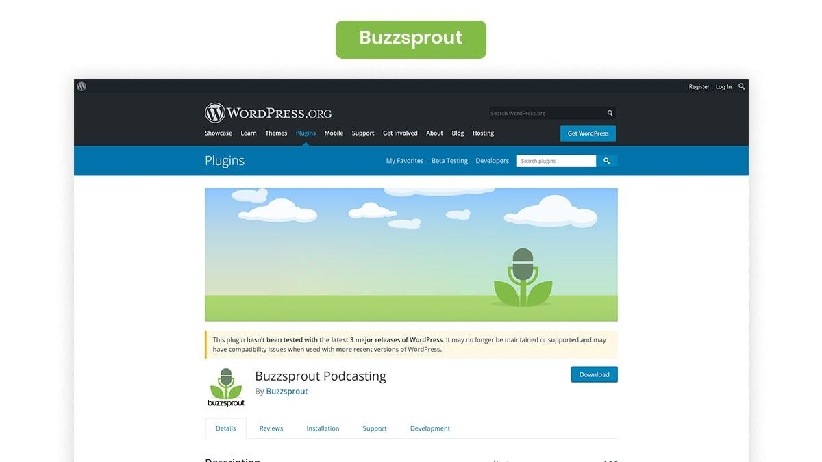 Buzzsprout- 10 Best WordPress Podcast Plugins Available In 2021