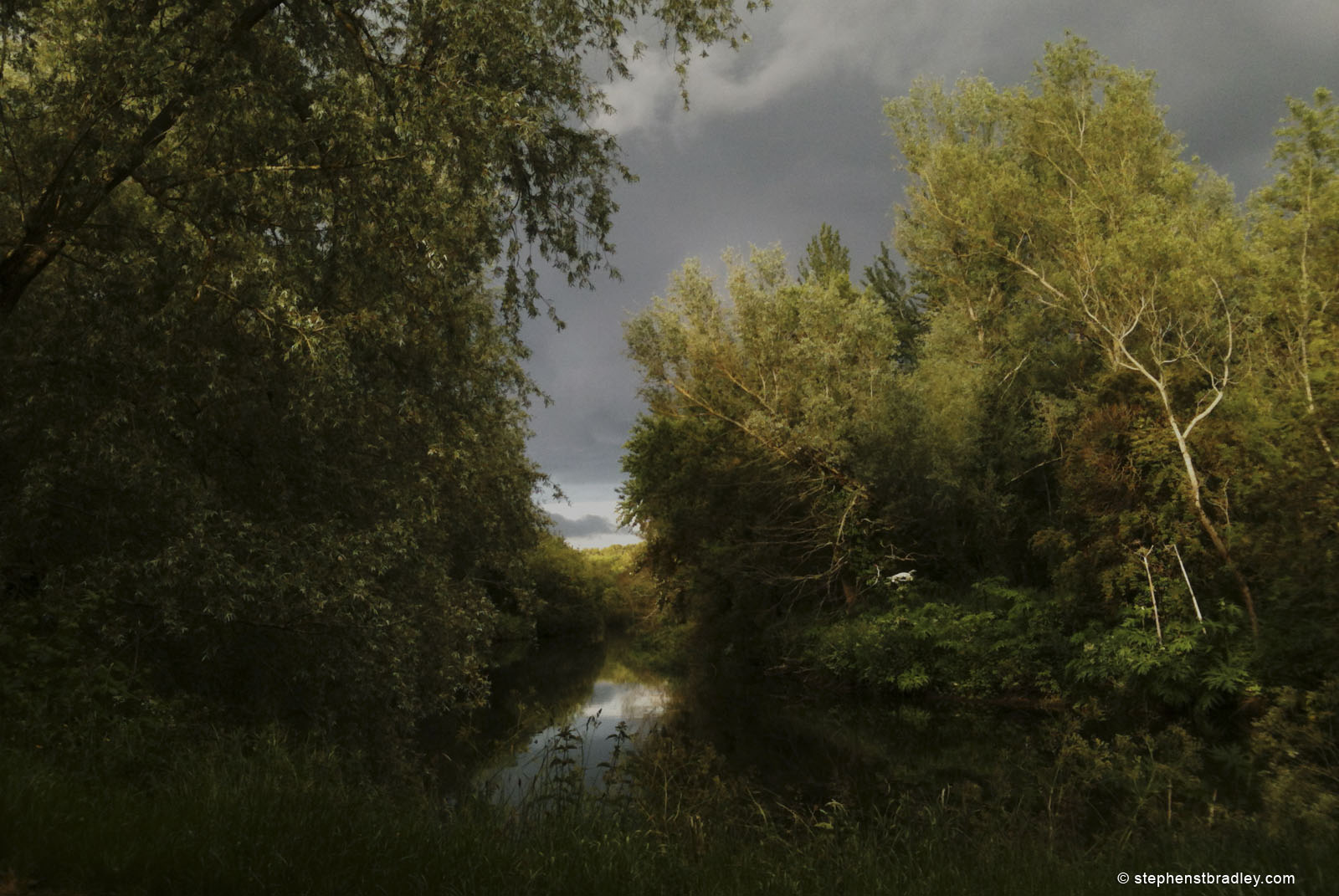 Landscape photograph of the Lagan Tow Path , Northern Ireland, by Stephen Bradley photographer - photograph 2508.