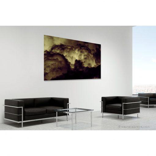 Evolutionary. Limited edition fine art photo 8690 in room setting - Stephen S T Bradley