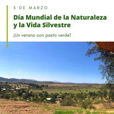 Dia Mundial de la Naturaleza y la Vida Silvestre