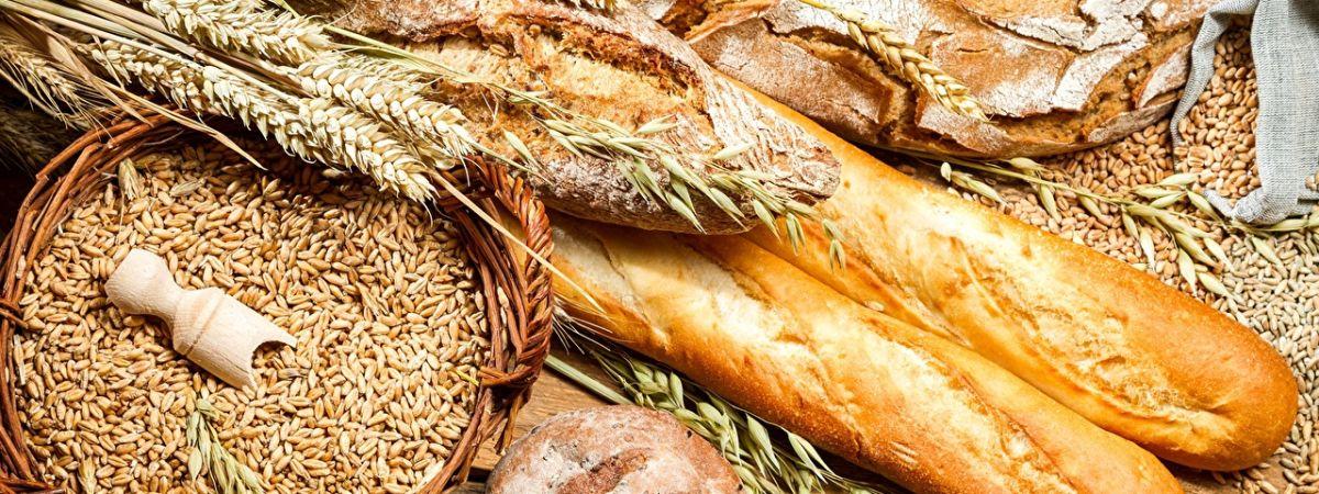 Slider Brot und Getreide