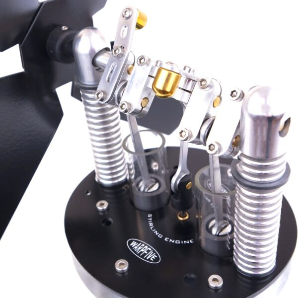 Stirling engine with twin pistons