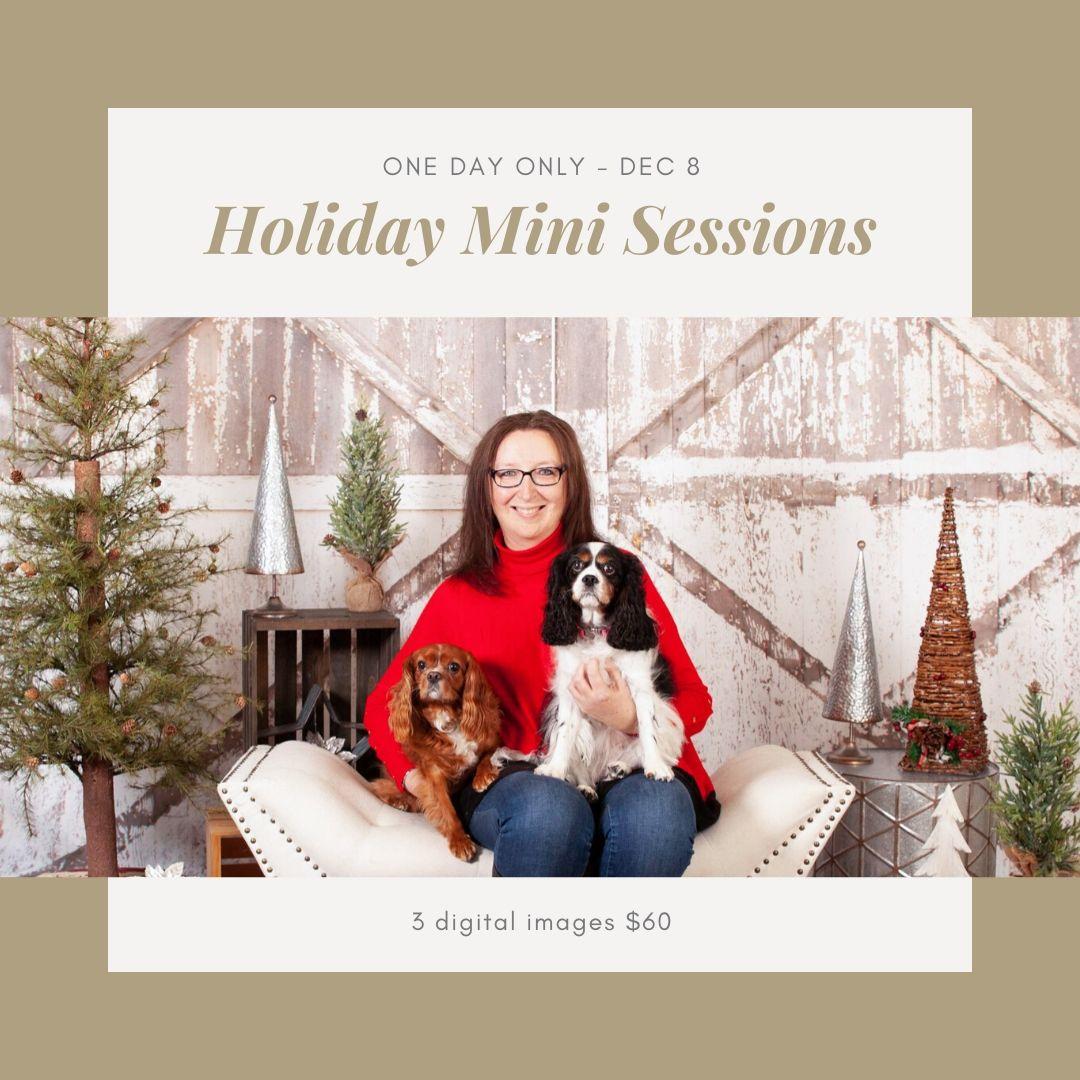 holiday mini session