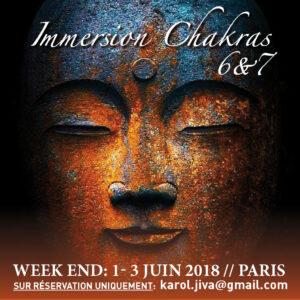 immersion2018_chakra6_721