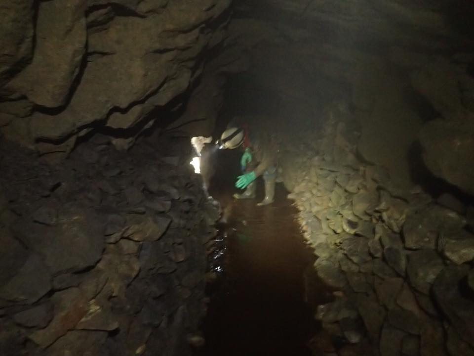 """Inspecting one of the levels. The """"deads"""" have been stacked up on either side of the passage to avoid having to haul them up the main shaft."""