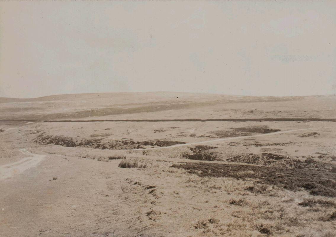 New Pasture Wall (1937 Eli Simpson)