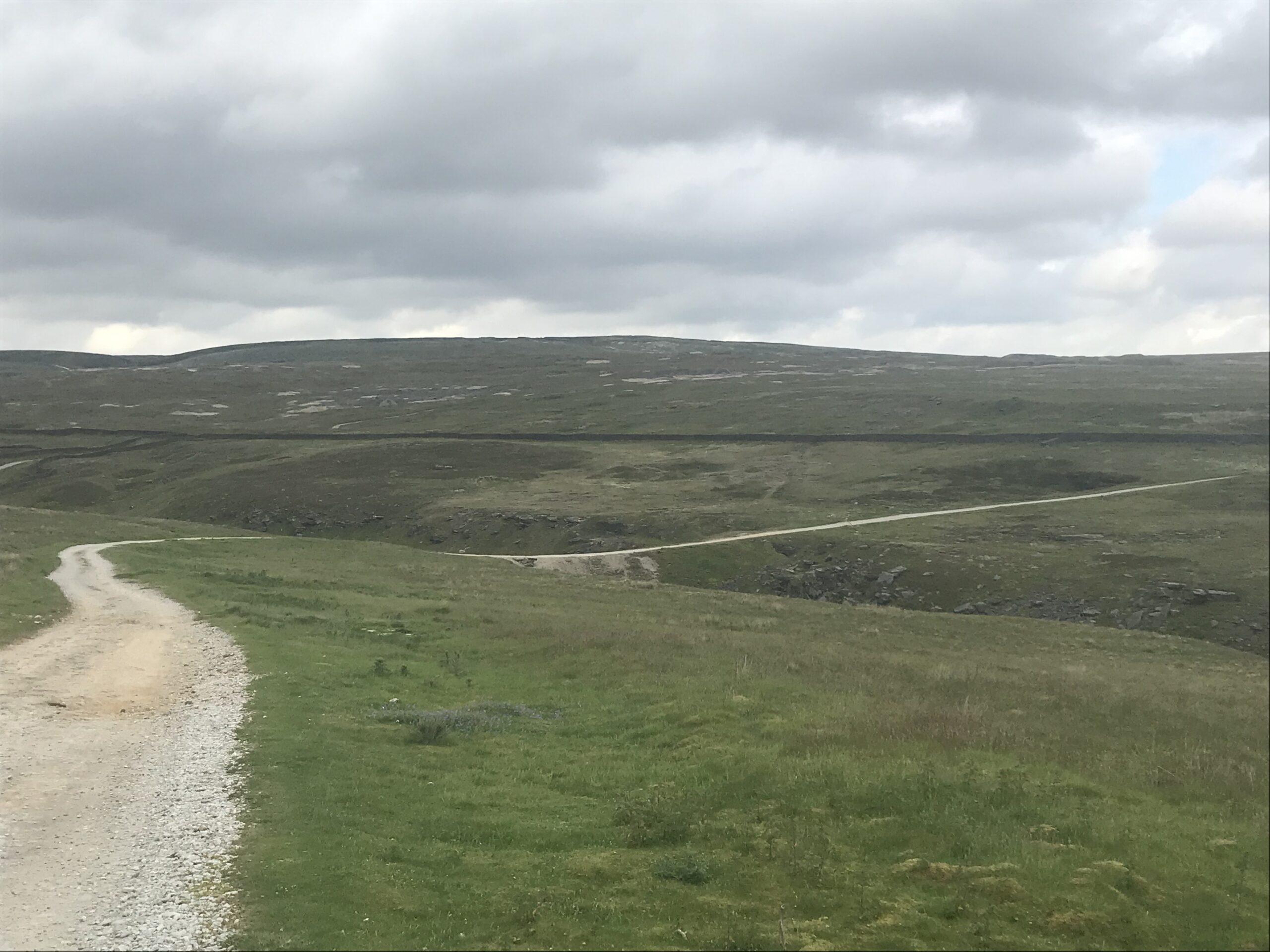 New Pasture Wall 2021