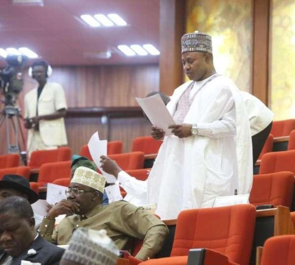Nigeria Under Siege By Non-State Actors — Senator