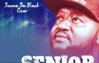 Making Waves Lyrically from Grass to Grace: Ace Lyricist, Seemo Da Black Czar Pens Down his Journey from Jos to Lagos and Back to Jos (The Industreetz)