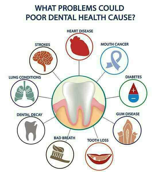 Dental and whole body health dr hafsa alidrissi dubai