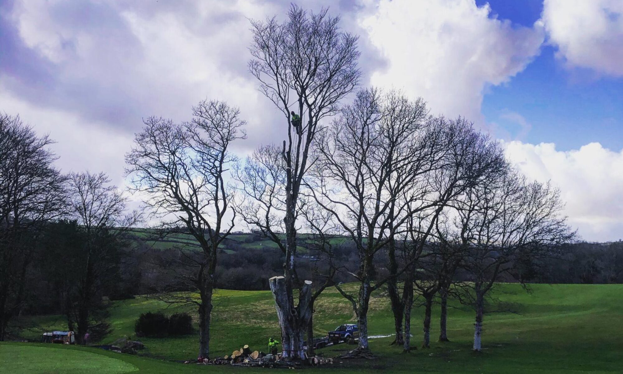 Hulls Landscapes and Tree Works