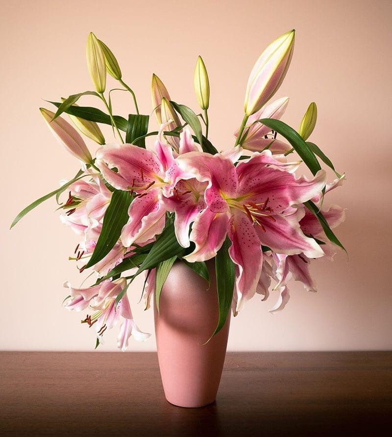 Pretty Pink Lilly Flowers Dubai