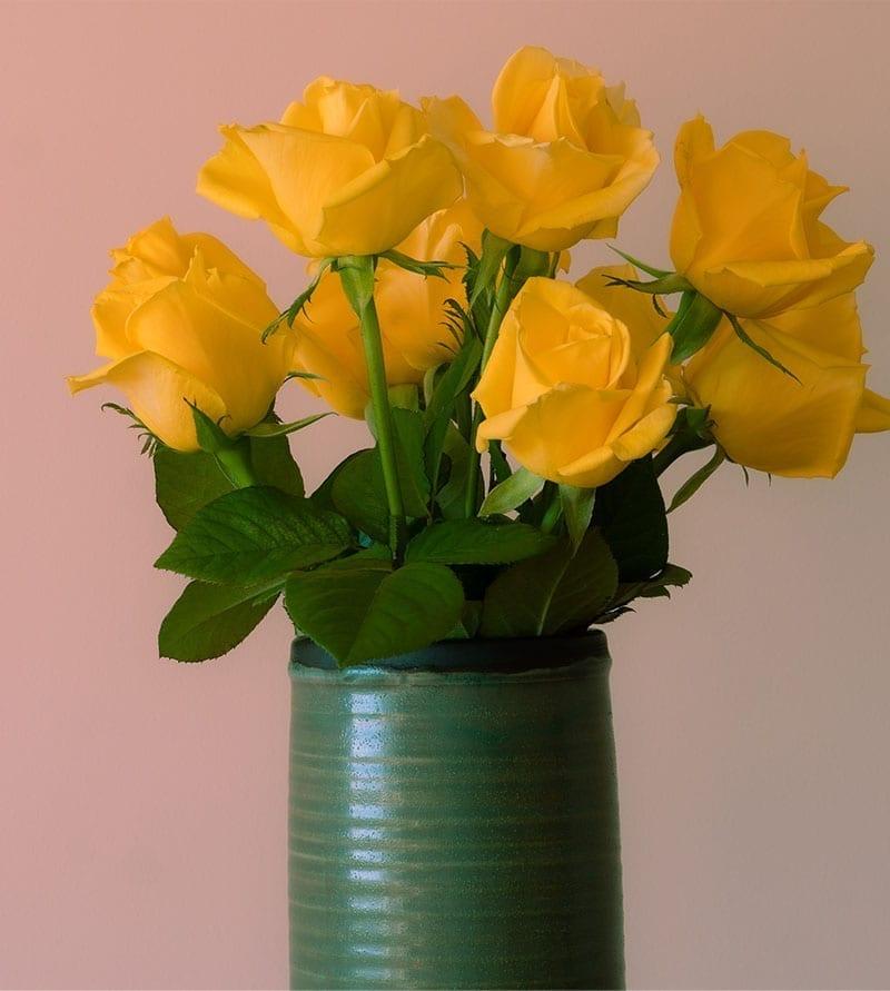 SEND YELLOW ROSE FLOWER TO DUBAI
