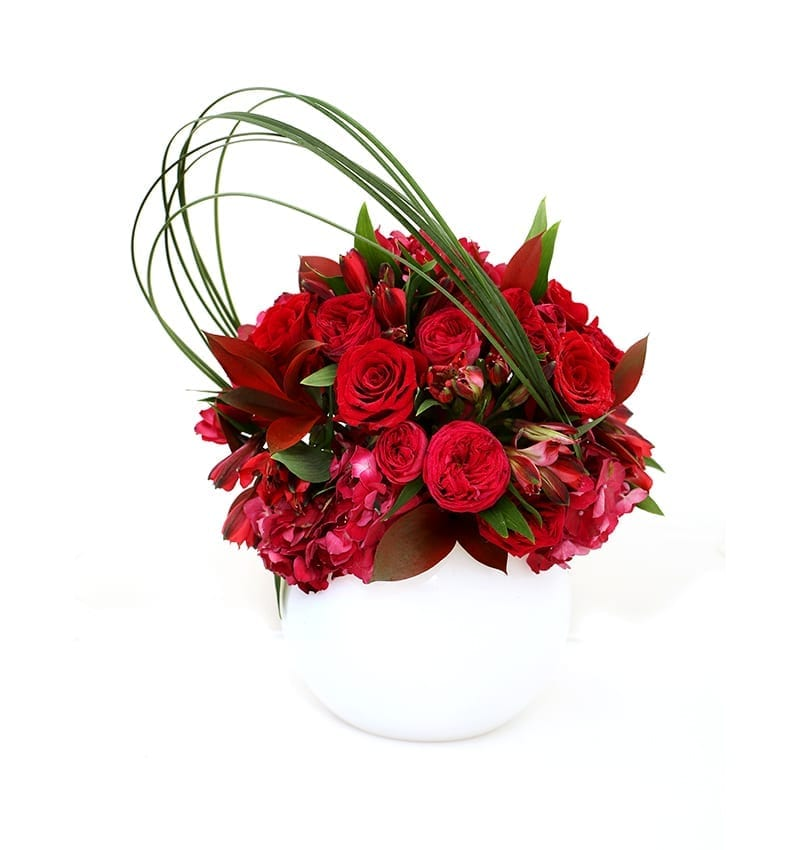 Love n Blossom