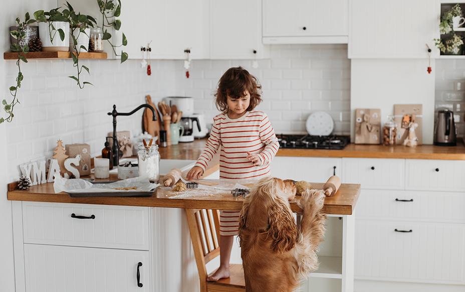 Warm Family Home Kitchen