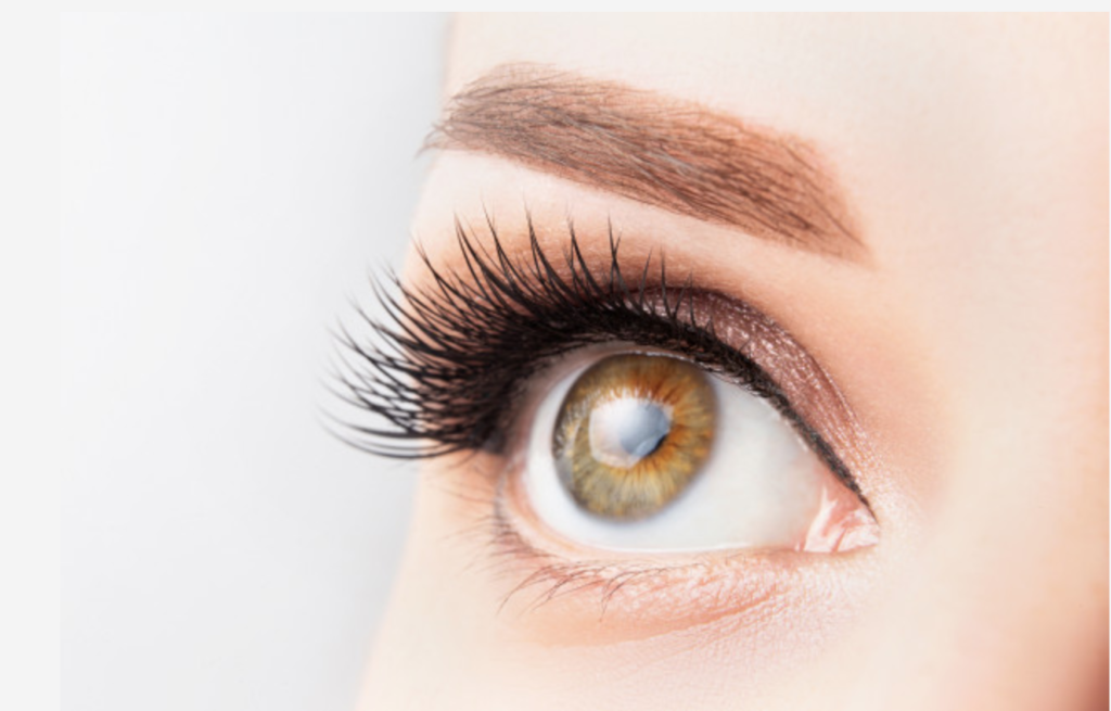 lash-lift-tint-course-london
