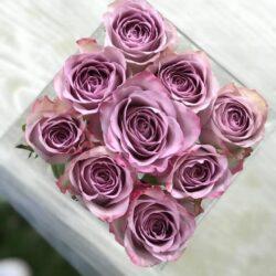Allard Fleurs