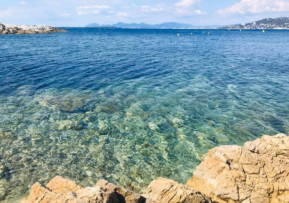 Anchoring, navigation, scuba diving & motorised water sports in Antibes