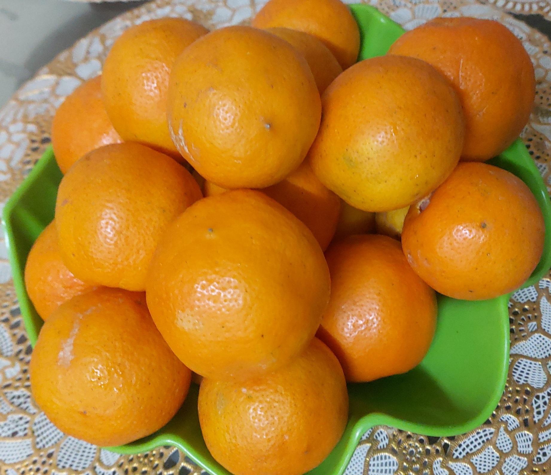 Citrus jambhiri Lush.- Jhamirdi (झमीरडी), jambiri, jambheri,  jatti khatti, khatti.