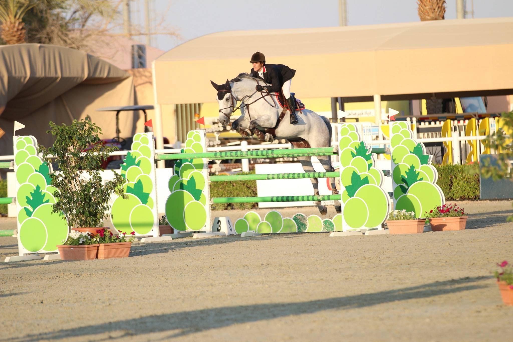 Diva Rosa MFS Al Ain 19 December 2015 Her first Mini GP 140cm