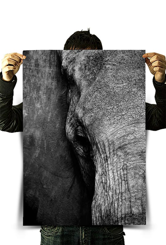 Kili Arts Advertising Poster Prints