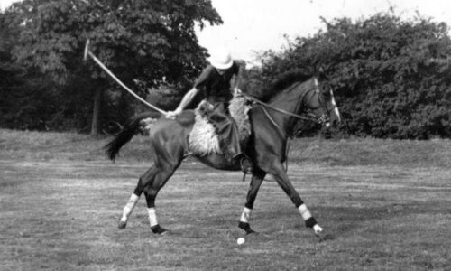 Ham Polo Johnny Traill on Horseback 2
